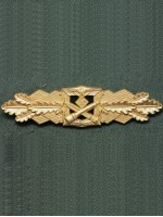 Close Combat Clasp (Nahkampfspange) in Gold
