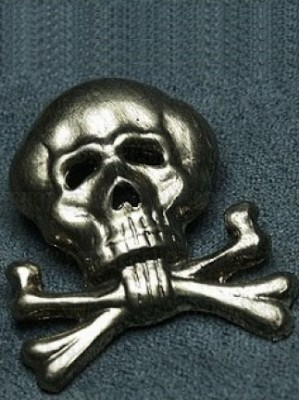 Replica of Brunswick Traditional Cap Skull (Cap Badges) for Sale (by ww2onlineshop.com)