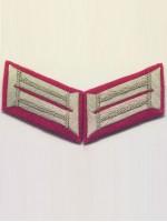 Heer Officer Waffenrock Collar Tabs(Panzer)