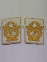Luftwaffe Generaloberst Collar Tabs