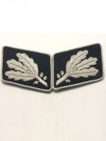 SS Lt General.(SS Gruppenfuhrer)Collar Tabs prior to 1942