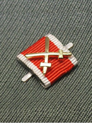 Replica of German Social Welfare Medal with Gold Swords (Ribbon Bars Devices) for Sale (by ww2onlineshop.com)