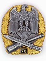 General Assault Badge 75 Engagements
