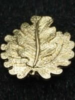 Golden Oak Leaves to the Pour le Mérite