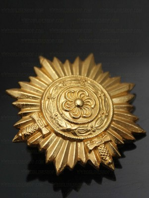Replica of Ostvolk Medal for Bravery on the Eastern Front in Gold with Swords 1ST Class (WWII German Medals) for Sale (by ww2onlineshop.com)